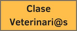 Clase Domicilio Vets