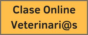 Clase Online Vets